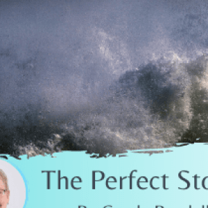 The Perfect Storm By Carole Randell
