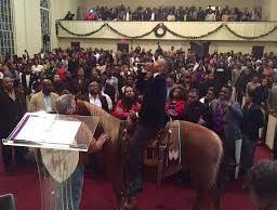 bishop oc allen-horse