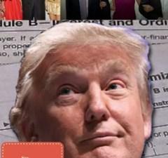 Donald Trump-Bully