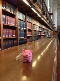 Mr Piggy getting cultured