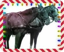 2013 Lebanon Horse Carriage