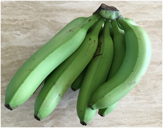 photo of very green bananas