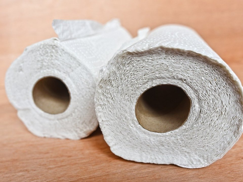 photo of paper towel
