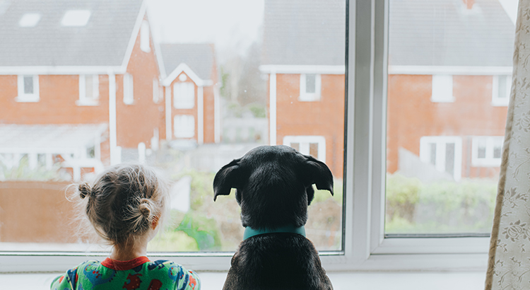 A Young girl and a black dog looking out a window onto houses.