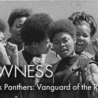 The Black Panthers: Vanguard of the Revolution (2016) -- Watch it Now