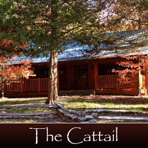 cabins-rates