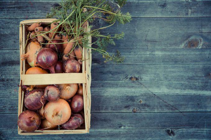 Basket of Onions.
