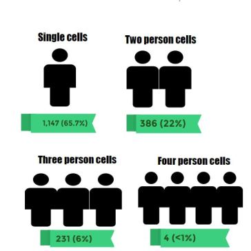 Cell sizes