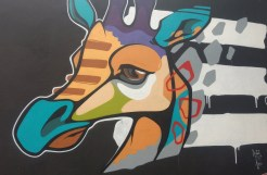 Graffiti Giraffe in the Tivoli theater carpark, image by Hannah Lemass