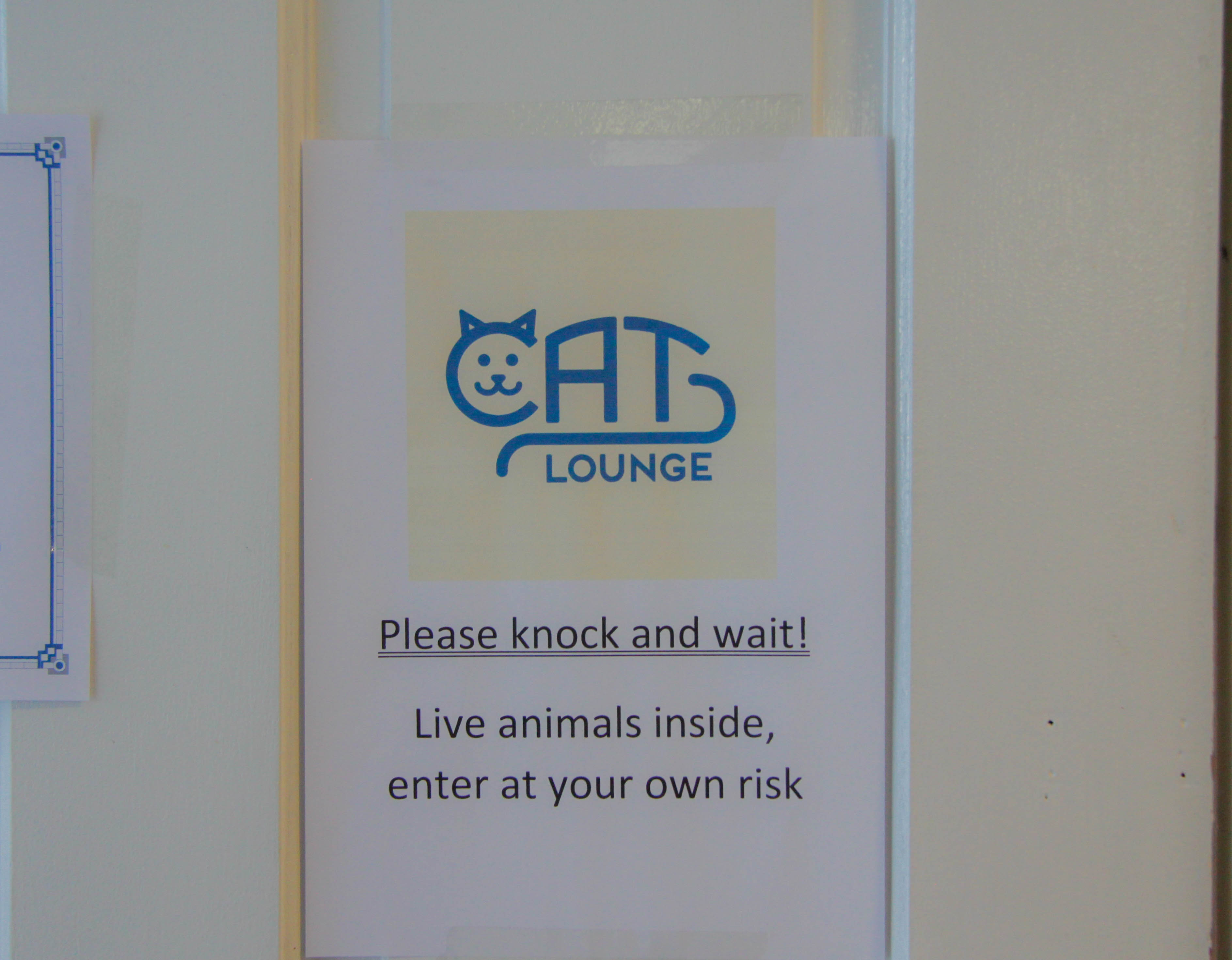 Cat lounge sign