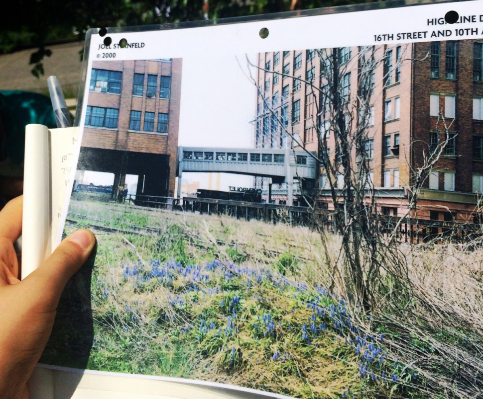 Photos of the wildflowers on the original abandoned tracks, taken by Joel Sternfeld, gave the founders inspiration.