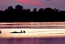 Amazon River boats by Juan Paulo Vargas