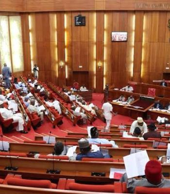 #EndSARS: Address Nigerians, Senate Tells Buhari ~Thecitypulsenews