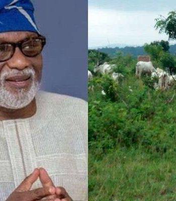 National Livestock Transformation Plan