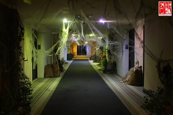 the halls of Le Charme decked with haloween decors