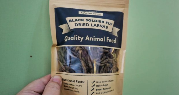 Kahariam Farms Black Soldier Fly Dried Larvae animal feed