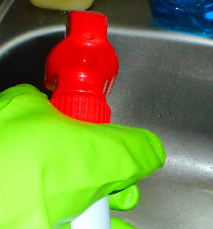 spray kitchen sink