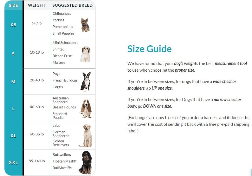 JoyRideHarness size guide