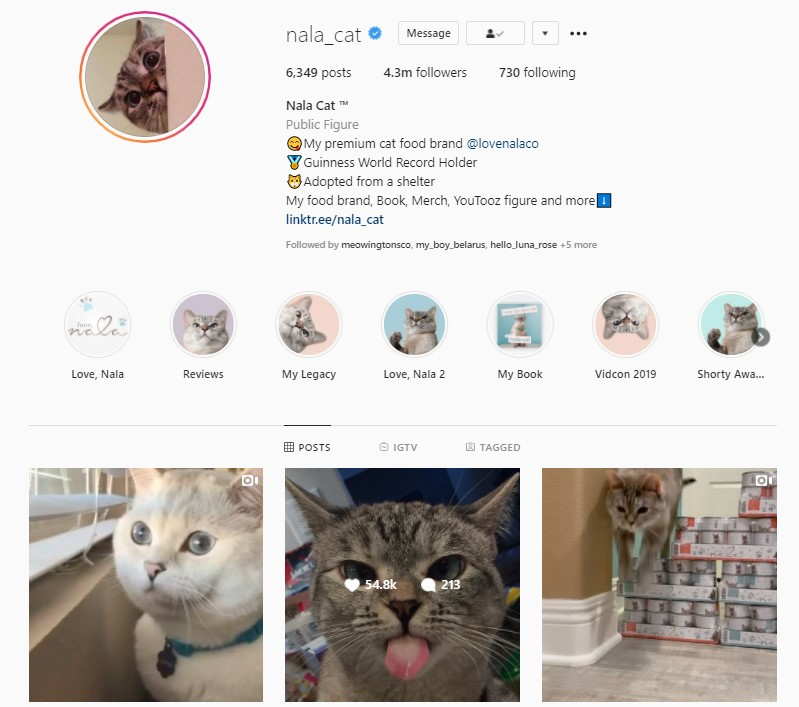 An Instagram account with good followers' engagement rates