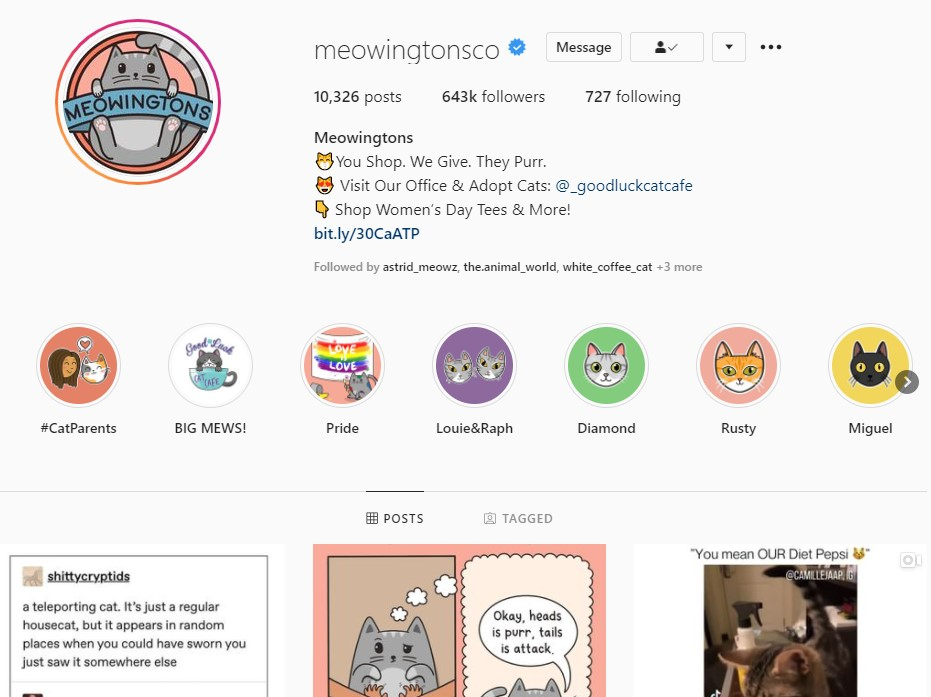 An Instagram account that sells online products to its followers