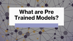 What are Pre Trained Models?