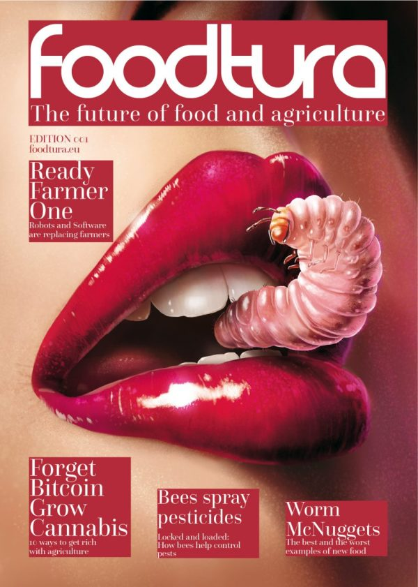 food marketing, food retail, greenhouse, agribotics, Artificial Intelligence, Sustainability, food safety, Supermarket Trends