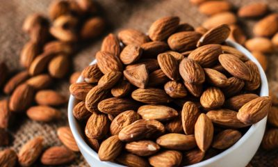 The essential information source about the Almond Industry in USA, Australia, South Africa