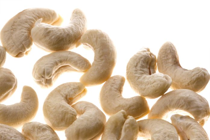 Fresh capital could revive the cashew processing industry in Kerala