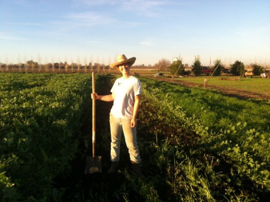 katie compost spreading