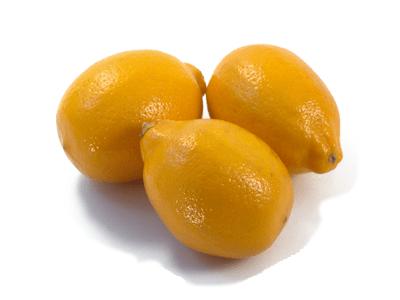 meyer-lemons-32