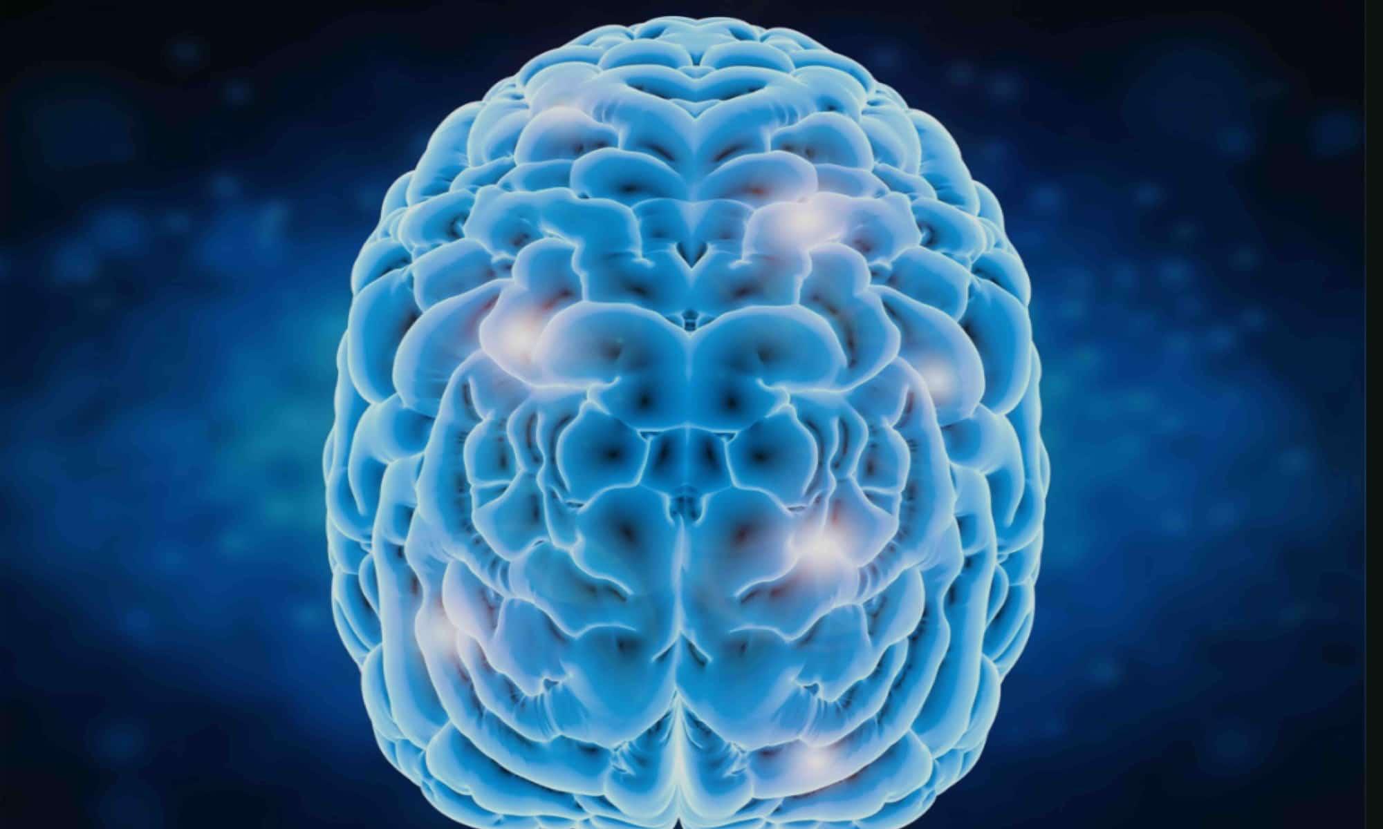 Blue Brain Clear