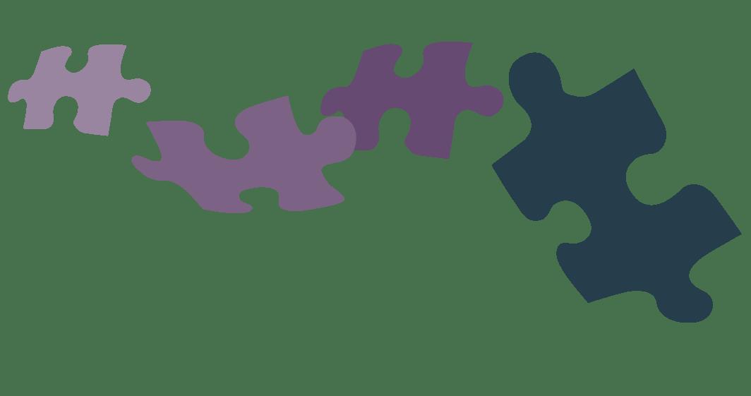 CMHS - Puzzle Pieces