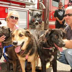 Alisa Khaitan & Peter Larson w/Donte, Abby & Daisey, Freehold - They're all rescue mutts. They're a part of our family. They do tricks. Daisey likes to play on the trampoline with the kids.