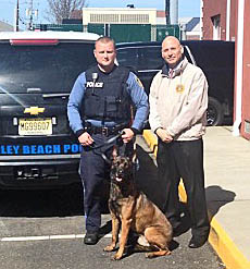 Coaster Photo - Bradley Beach Police Officer Andrew Redmond (left) and Police Chief Leonard A. Guida welcome the department's newest officer, K9 Sting.