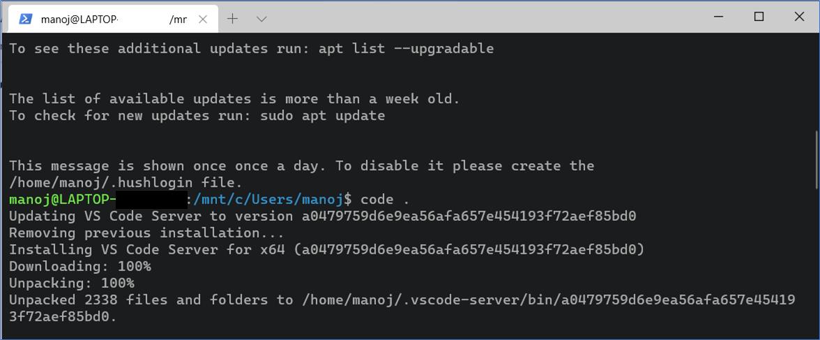 Linux Terminal - Instantiating VS Code Server