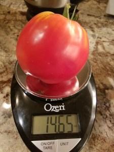 Amos Coli Heirloom Tomato | The Coeur d Alene Coop