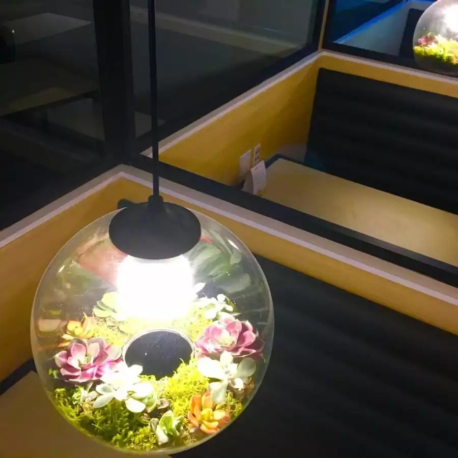 Gorgeous Booth Planter Lights in Our Furnished Monthly Coworking Space - The Collection