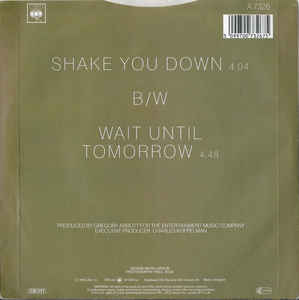 Gregory Abbott- Shake You Down
