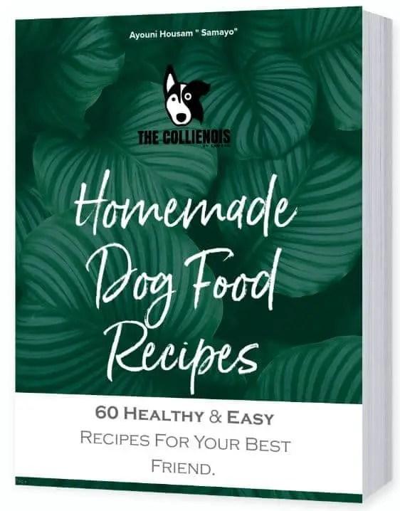 60 homemade dog food recipes
