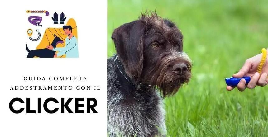 Come Addestrare Un Cane o un cucciolo Con il Clicker [Guida]
