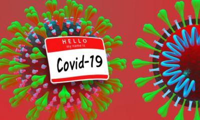 Chloroquine Found Effective Against Coronavirus