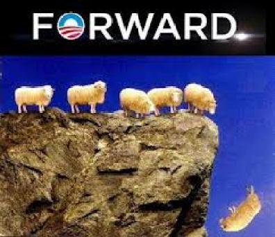 sheep-forward