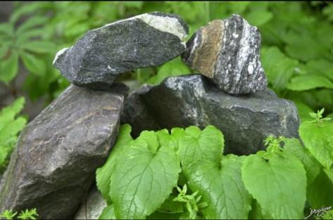 garden, sculpture, kiss, The Common Vein, Ashley Davidoff MD