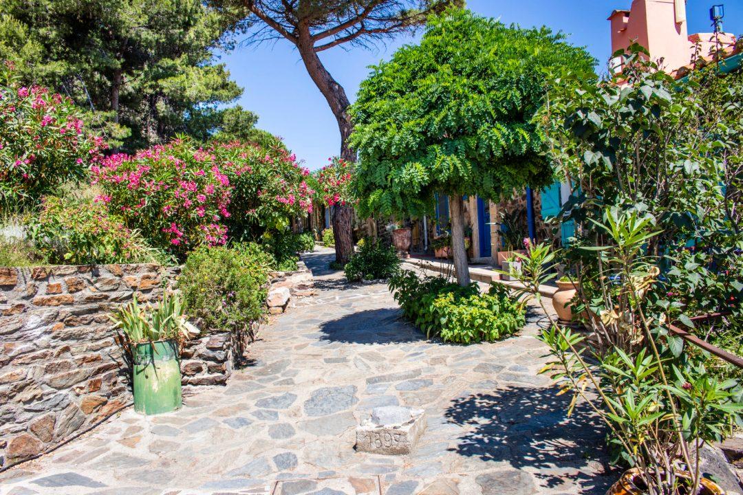 Découverte de Collioure dans les Pyrénées orientales