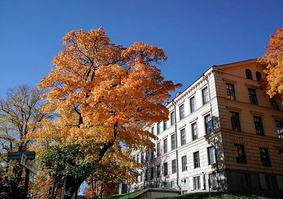 Vivre 4 mois en Finlande : Helsinki, Laponie, …