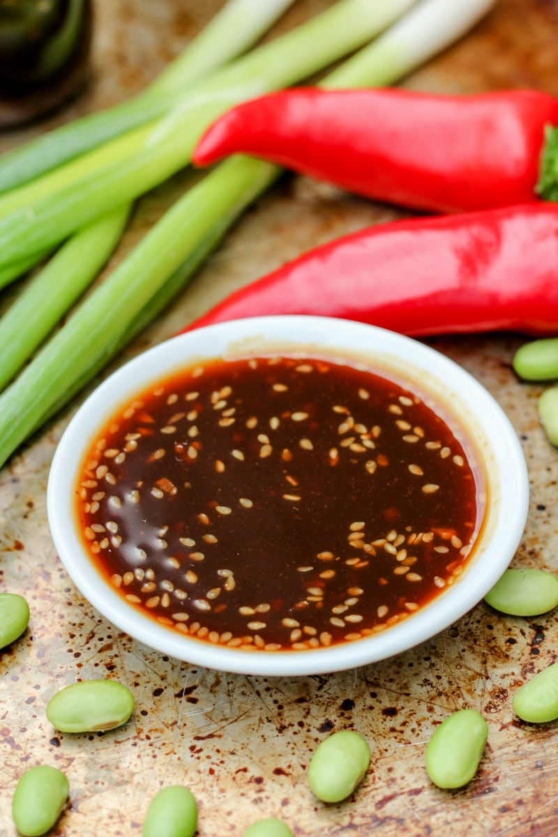 Easy Asian Inspired Everything Sauce