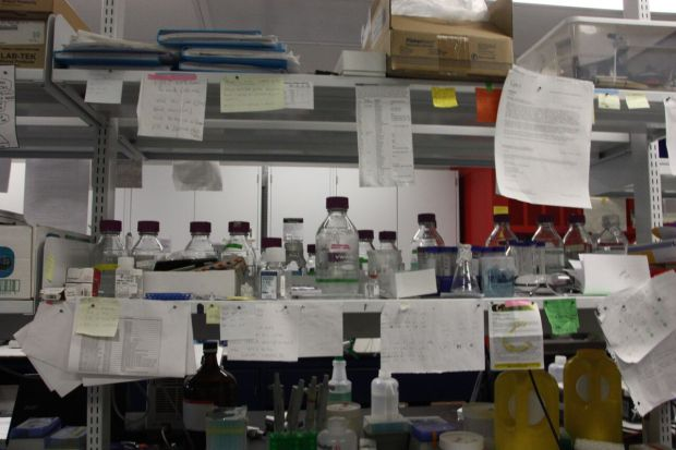 Concordia's cancer research lab is located in the SP building on Loyola campus. Photo by Savanna Craig.