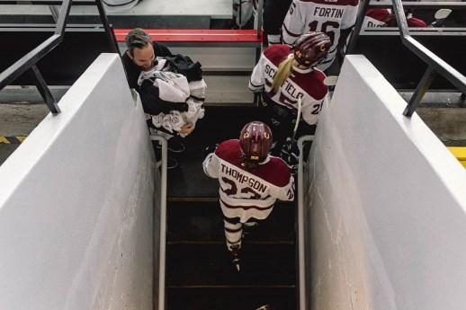 stingers women's hockey