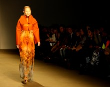 DorhoutMees_AFW_15