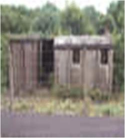 Green Concrete Hut